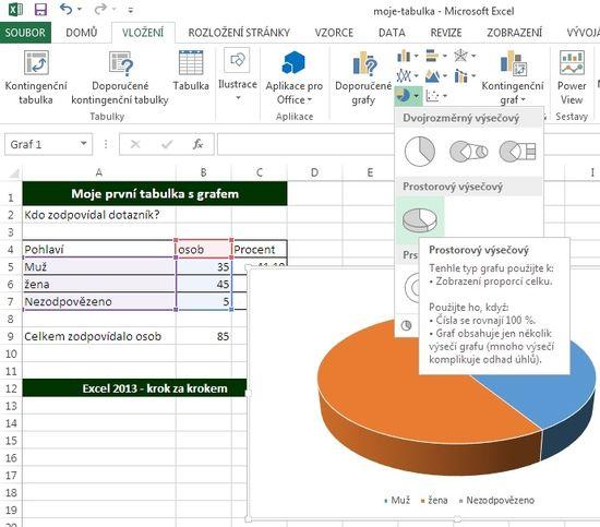 MS Excel 2013 - graf vkládání