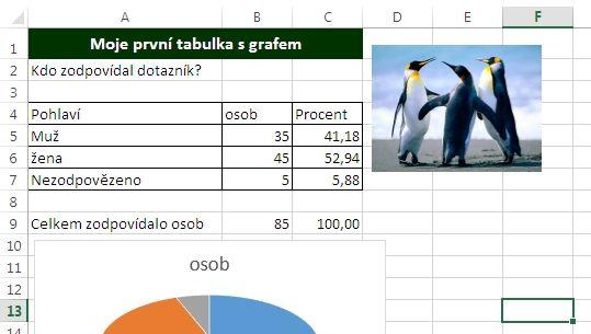 MS Excel 2013 - obrázek vložen
