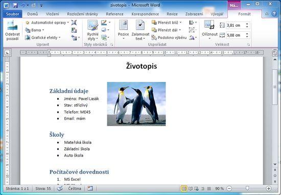MS Word 2010 - vlozeni obrazku okno
