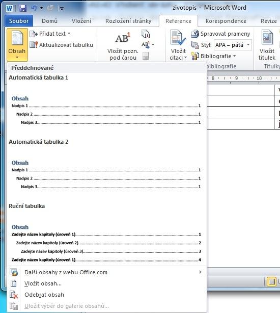 MS Word 2010 - obsah výběr