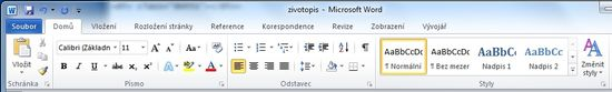 MS Word 2010 - sekce styly